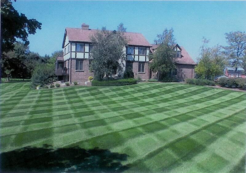 beautiful lawn maintenance