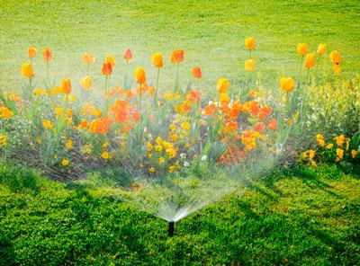 sprinkler+repair+st.augustine