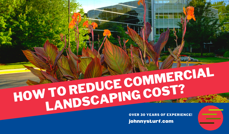 commercial-landscaping-Jacksonville