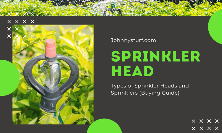 Types of Sprinkler Heads and Sprinklers (Buying Guide)