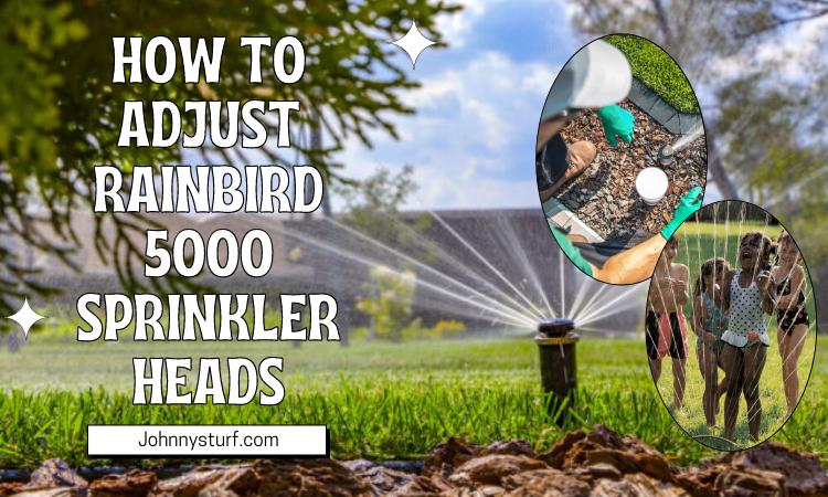 How to Adjust Rainbird 5000 Sprinkler Heads?